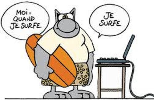 Cat Surf (Crédits : Geluck)