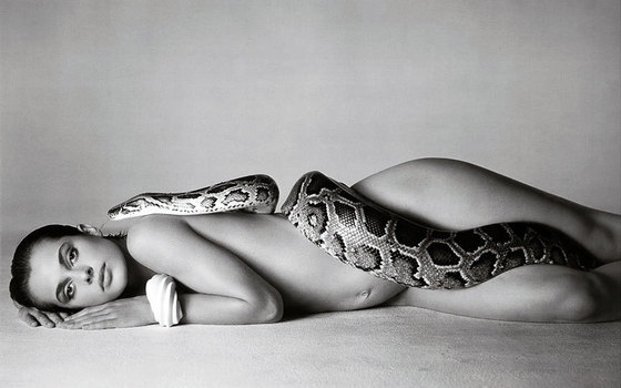 Avedon_Richard_NastassjaKinski_and_the_Serpent_1981_lightbox