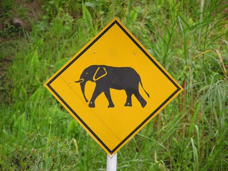 RTEmagicC_elephant-panneau_dckf__er_pH_nX_flivkr_cc_by_nc_nd_2.0_txdam27612_6c9289