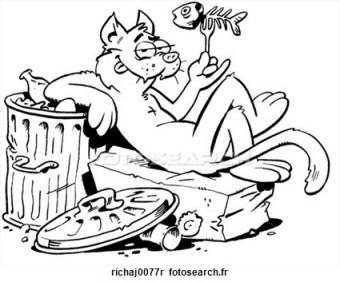 chat-felin-ruelle_~richaj0077r