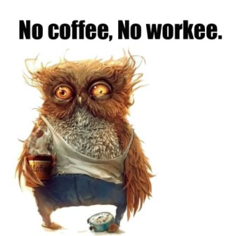 funny-pictures-no-coffee-no-workee