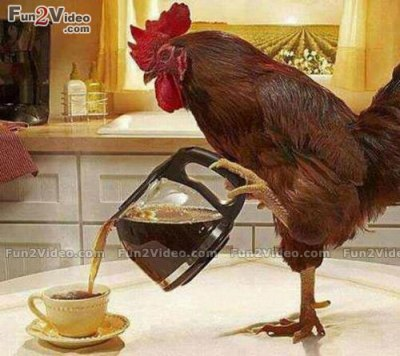 good-morning-funny-coffee