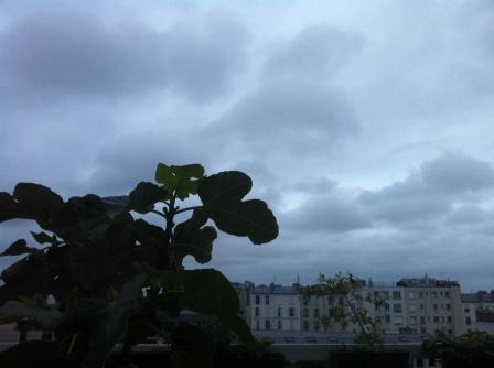 Paris 24 Juin 2013 c Renaud Favier