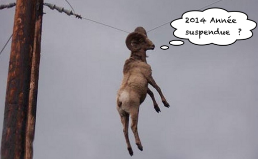 Bon 2014 suspendu 1