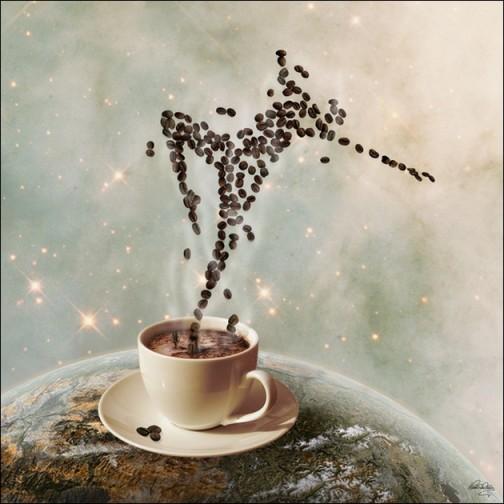 Marilyn Coffee ...