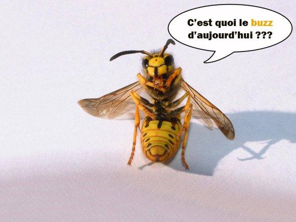 buzz-humour