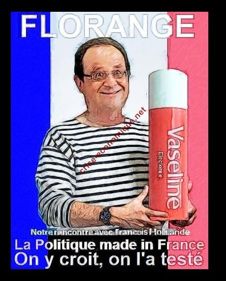Hollande-Florange-retour-humour