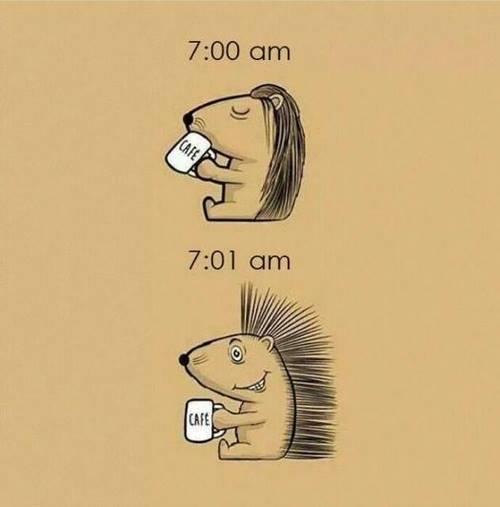 It's Always Coffe Time - C'est toujours le moment d'un café