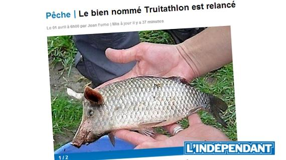 Poisson d'avril 1er Avril Joke Blague Humour