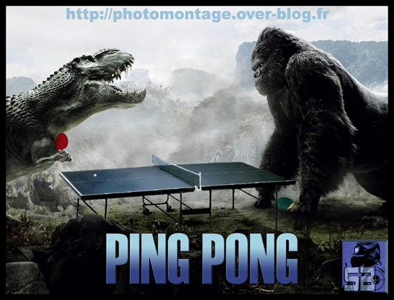 PING-PONG Humour Politique