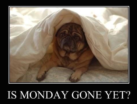 Is Monday Gone Yet ?
