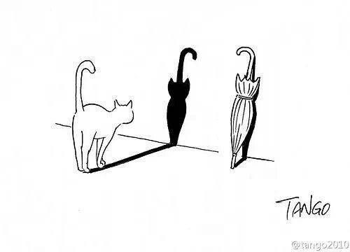 Tango Cat Chat