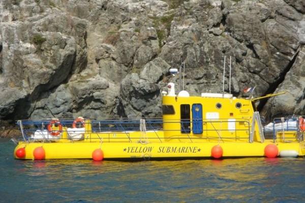 yellow-submarine-st-barts-0-p02