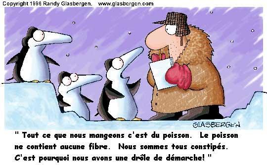 humour_demarche