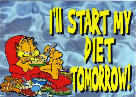 Diet Tomorrowland David Guetta Drugs