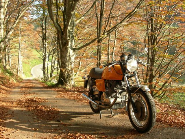 laverda-sf-750-indian-summer