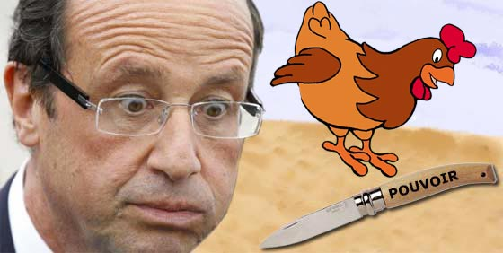 hollande-couteau-poule