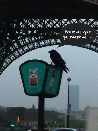 Paris Tour Eiffel 23 janvier 2015 c Renaud Favier