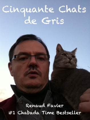 cinquante-chats-de-gris-octobre-2012-renaud-favier1