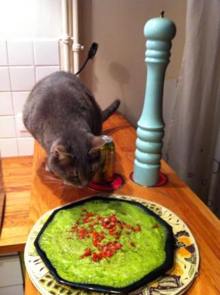 Chabada puree de brocoli et gojis 1 novembre 2013