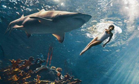 femme-requin