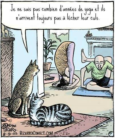 Piraro BizarroComics 2002