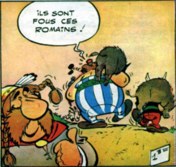Ils sont fous ces Romains Asterix et Obelix
